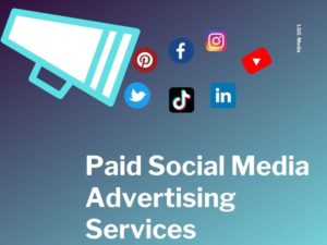 paid social media advertising services